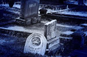 Bioquark Reanima Project - Obit Magazine - Death, funeral, obituary